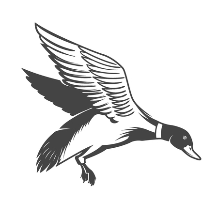 Wild duck icon Vector illustration
