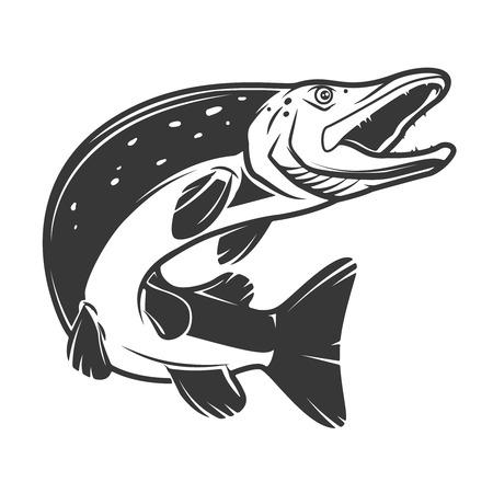 흰색 배경에 고립 파이크 물고기 아이콘입니다. 로고, 레이블, 엠 블 럼, 기호, 배지 디자인 요소입니다. 벡터 일러스트 레이 션