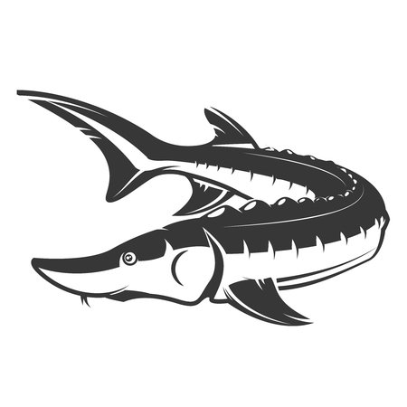 Fresh seafood. Sturgeon icon on white background. Design element for logo, label, emblem, sign. Vector illustration Vettoriali