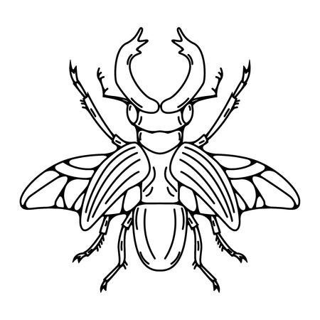 Käferillustration lokalisiert auf weißem Hintergrund. Vektor-Illustration Vektorgrafik