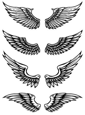Set of wings illustration isolated on white background. Design elements for logo, label, emblem, sign.