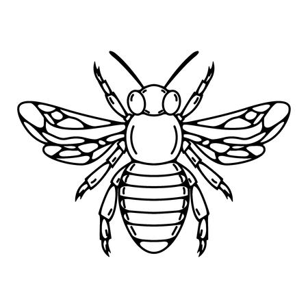 蜂のイラストを分離ベクトル図