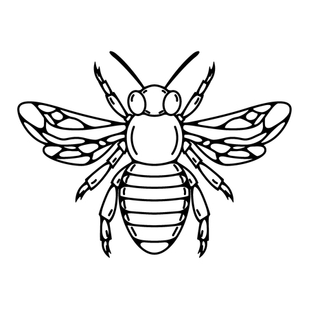 Bee illustration isolated Vector illustration Ilustração