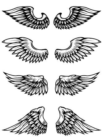 Set of wings isolated on white background. Design elements for logo, label, emblem, sign. Vector illustration Ilustração
