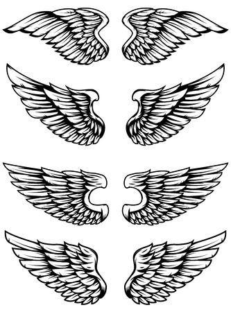 Set of bird wings isolated on white background. Design elements for logo, label, emblem, sign. Vector illustration Иллюстрация