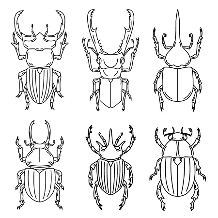 Set of insects outline illustrations isolated on white background, Vector Reklamní fotografie - 85184209