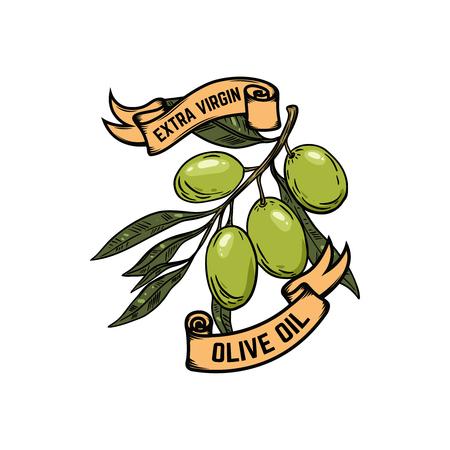 olive green: Extra virgin olive oil. Olives illustration on white background. Design element for poster, banner, card, emblem, sign, label. Vector illustration