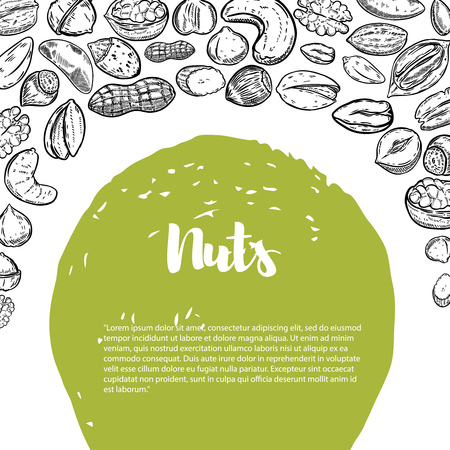 Nuts. A flyer template with border from nuts illustrations.