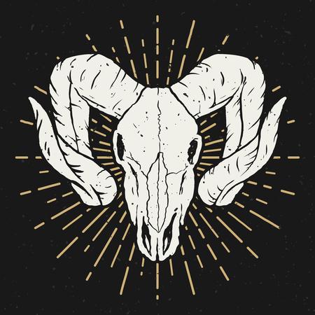 Ram skull illustration. Design element for poster, t shirt. Vector illustration