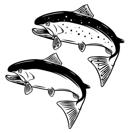 Salmon fish illustration on white background. Design element for logo, label,emblem, sign. Vector illustration Çizim