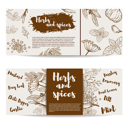 Herbs and spices. Design element for flyer, banner, poster. Ilustracja