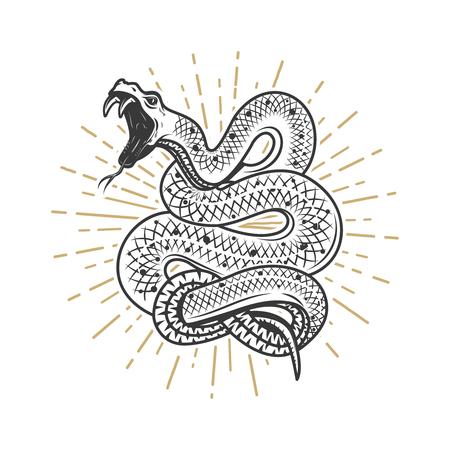 Viperschlangenillustration auf weißem Hintergrund. Gestaltungselement für Poster, Emblem, Zeichen. Vektor-Illustration