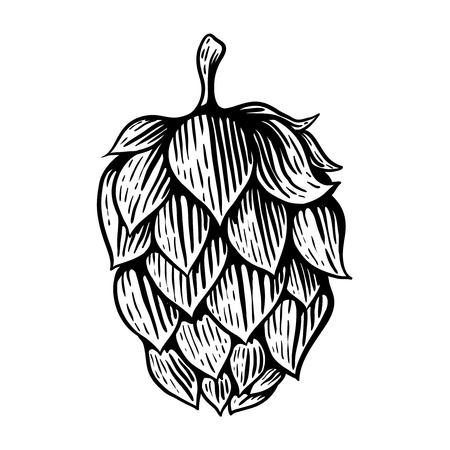 Beer hop in engraving style. Design element for poster, card, banner. Vector illustration