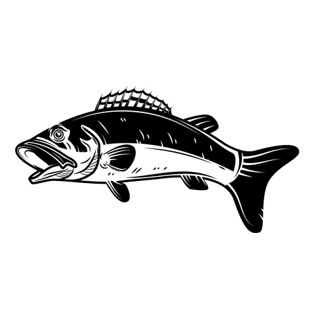 Perch fish icon isolated on white background. Design element for logo, label, emblem, sign. Vector illustration