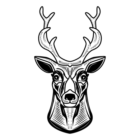 Deer icon isolated on white background. Design element for label, emblem, sign. Vector illustration