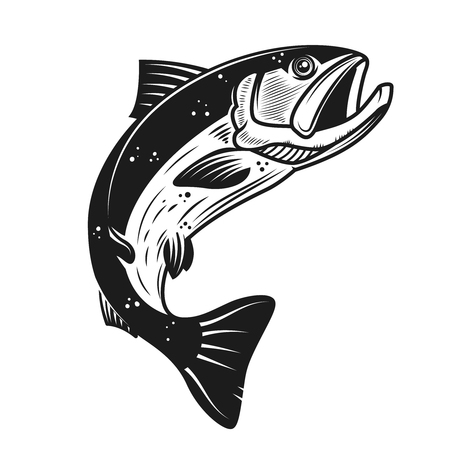 Ícone de salmão isolado no fundo branco. Elemento de design para o rótulo, emblema, sinal, banner, cartaz. Ilustração vetorial