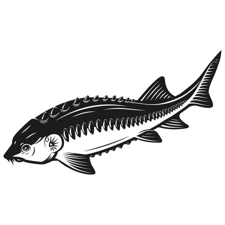 Icona di storione pesce isolato su sfondo bianco. Elemento di design per etichetta, emblema, segno. Illustrazione vettoriale
