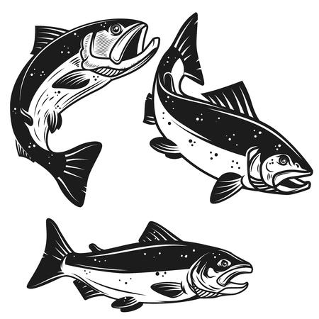 Set van zalm vis pictogrammen geïsoleerd op een witte achtergrond. Ontwerpelement voor poster, etiket, embleem, teken, t-shirt vectorillustratie. Stockfoto - 94988729