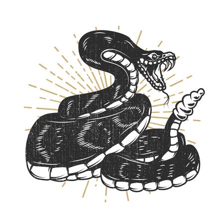 Viper snake illustration. Design element for emblem, sign, poster, t-shirt. Vector illustration.