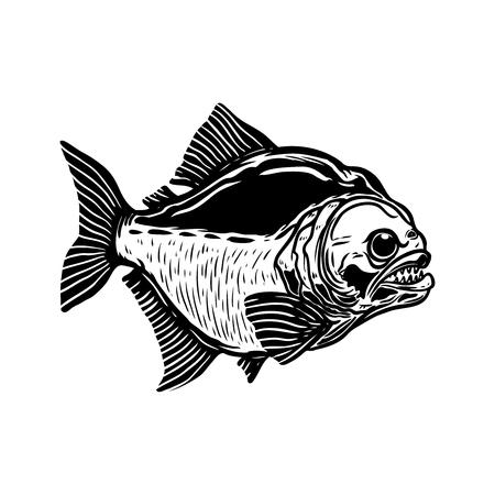 Piranha fish illustration isolated on white background. Design element for poster, t shirt, banner, emblem. Vector illustration