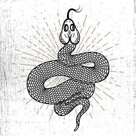 Snake illustration on grunge background. Design element for poster, card, emblem, logo, sign, t shirt. Vector illustration Illustration