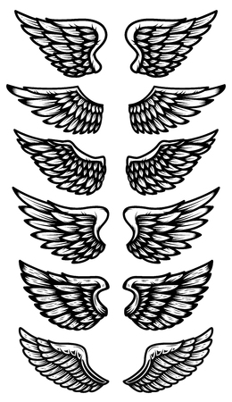 Set of wings icon design Imagens - 99911679