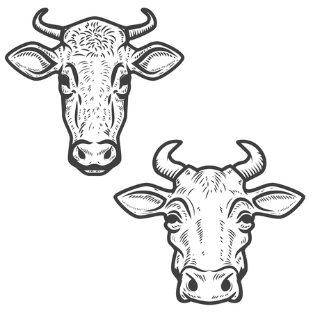 Set of cow heads on white background. Design element for logo, label, emblem, sign. Vector image