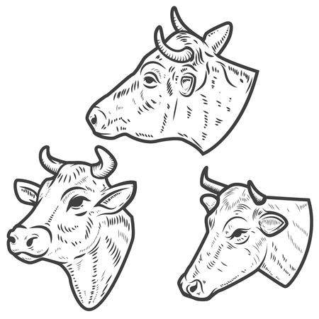 Set of cow heads on white background. Design element for logo, label, emblem, sign. Vector image