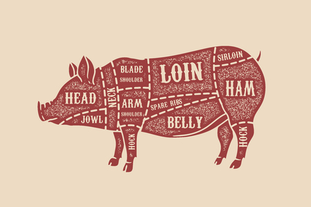 Pig butcher diagram. Pork cuts. Design element for poster, card, emblem, badge.
