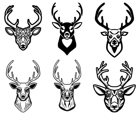 Set of deer head illustrations on white background. Design elements for poster, emblem, sign, badge.