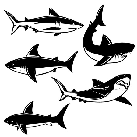 Set of shark illustrations on white background. Design element for logo, label, emblem, sign. Vector image