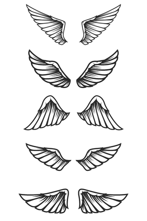 Set of wings on white background. Design elements for logo, label, emblem, sign. Vector image