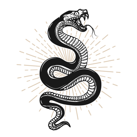 Snake illustration on white background Vettoriali