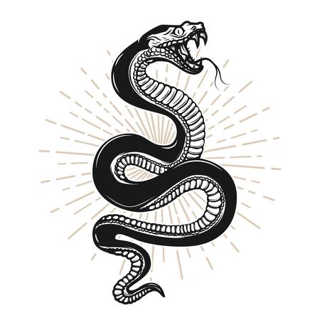Ilustración de serpiente sobre fondo blanco