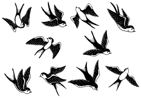 Set of hand drawn swallow illustrations on white background. Design elements for poster, card. Vector image