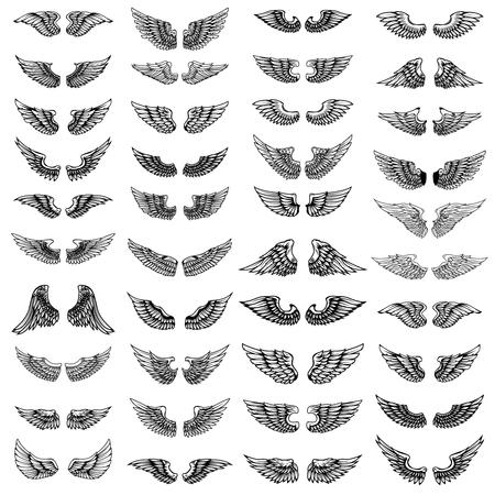 Grande set di ali su sfondo bianco. Elementi di design per logo, etichetta, emblema, segno. Immagine vettoriale Logo
