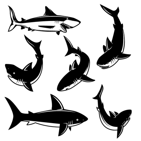 Set of shark illustrations. Design element for poster, print, emblem, sign. Vector illustration