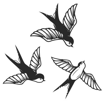 Conjunto de ilustraciones de golondrinas dibujadas a mano sobre fondo blanco. Elementos de diseño para cartel, tarjeta. Ilustración de vector