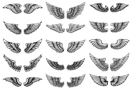 Conjunto de ilustraciones de alas de pájaro en estilo tatuaje. Elemento de diseño para etiqueta, cartel, impresión, tarjeta, banner, letrero. Ilustración de vector