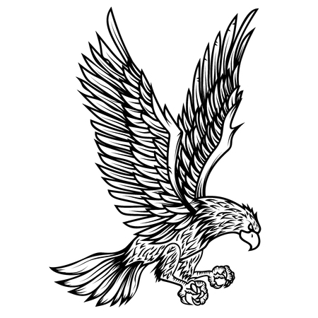 Eagle illustration on white background. Design element for poster, card, print, logo, label, emblem, sign. Vector image 向量圖像