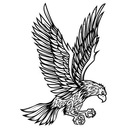 Illustrazione dell'Aquila su sfondo bianco. Elemento di design per poster, carta, stampa, logo, etichetta, emblema, segno. Immagine vettoriale