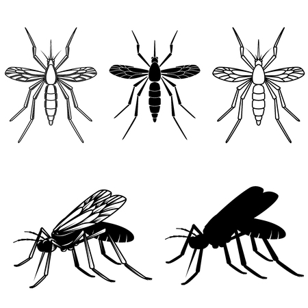 Set of mosquito illustrations. Design element for logo, label, emblem, sign. Vector image Illustration