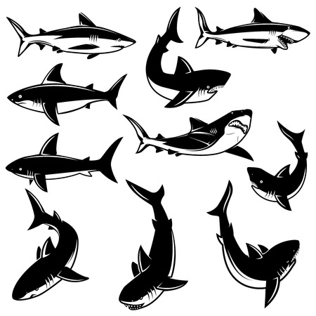 Set of shark illustrations. Design element for logo, label, print, badge, poster. Vector image