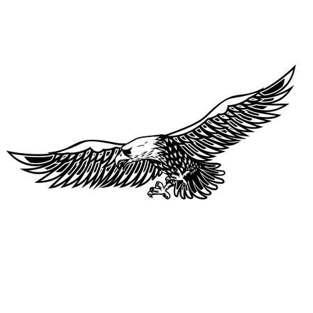 Eagle illustration on white background. Design element for poster, card, print, logo, label, emblem, sign.