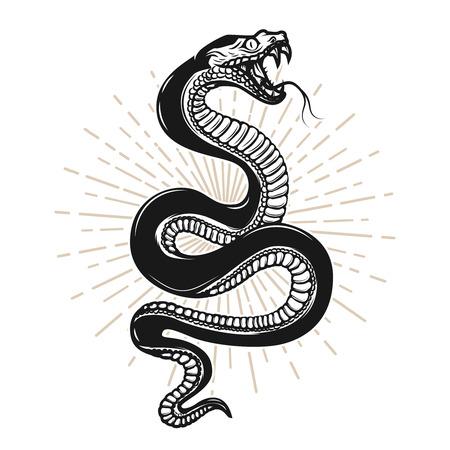Ilustración de serpiente sobre fondo blanco. Elemento de diseño de cartel, camiseta, emblema, letrero.
