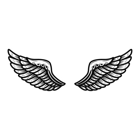 Wings isolated on white background. Design element for logo, label, emblem, sign. Фото со стока