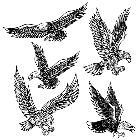 Set of eagles illustrations. Design element for logo, label, emblem, sign, poster, t shirt. Vector image 写真素材 - 114727612