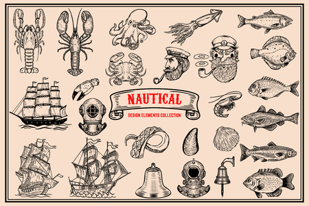 Big set of design elements for nautical emblems, seafood restaurant. Vector illustration. Illustration