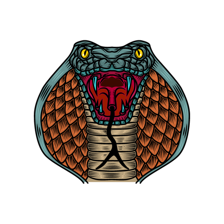 Cobra snake illustration in old school tattoo style. Design element for logo, label, sign, poster, t shirt. Vector illustration  イラスト・ベクター素材