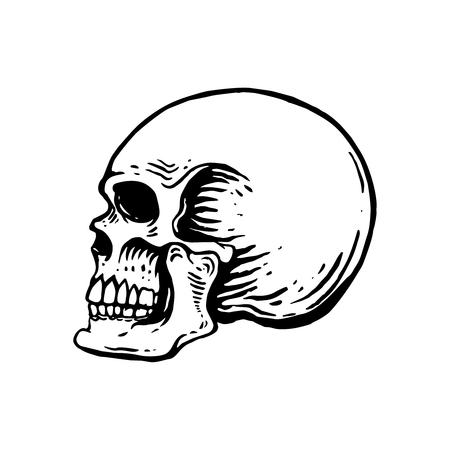 Hand drawn human skull illustration on white background. Design element for logo, label, emblem, sign, poster, t shirt. Vector image